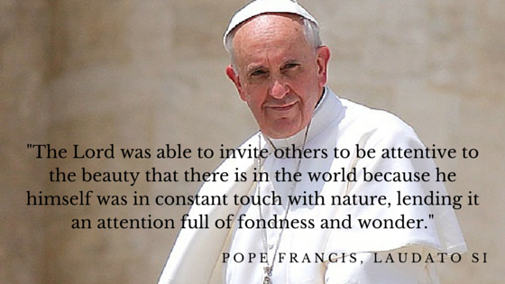 Popequote.png
